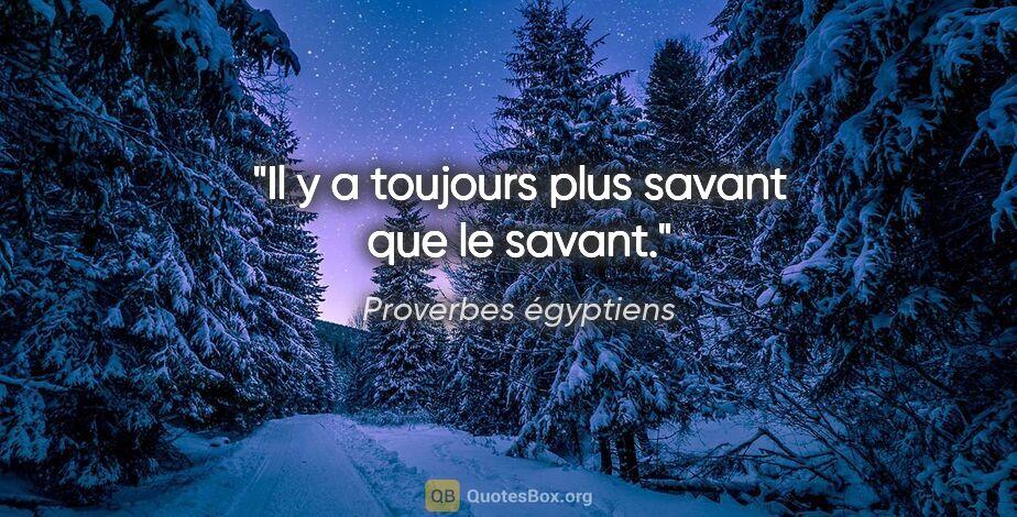 """Proverbes égyptiens citation: """"Il y a toujours plus savant que le savant."""""""