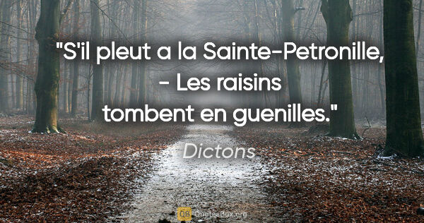 "Dictons citation: ""S'il pleut a la Sainte-Petronille, - Les raisins tombent en..."""
