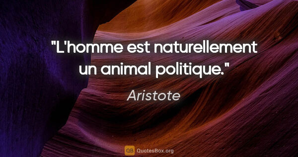 "Aristote citation: ""L'homme est naturellement un animal politique."""