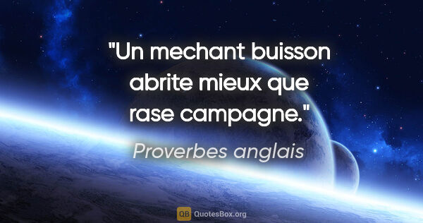 "Proverbes anglais citation: ""Un mechant buisson abrite mieux que rase campagne."""