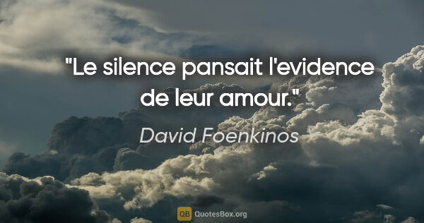 "David Foenkinos citation: ""Le silence pansait l'evidence de leur amour."""