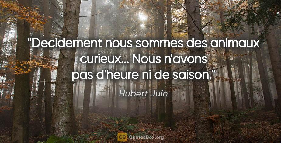"""Hubert Juin citation: """"Decidement nous sommes des animaux curieux... Nous n'avons pas..."""""""