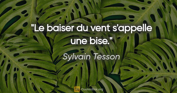 "Sylvain Tesson citation: ""Le baiser du vent s'appelle une bise."""