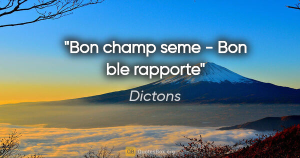 "Dictons citation: ""Bon champ seme - Bon ble rapporte"""