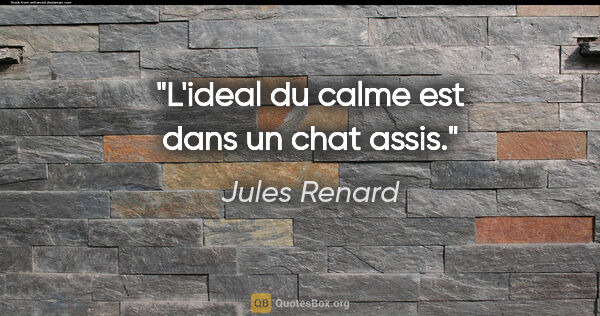"Jules Renard citation: ""L'ideal du calme est dans un chat assis."""
