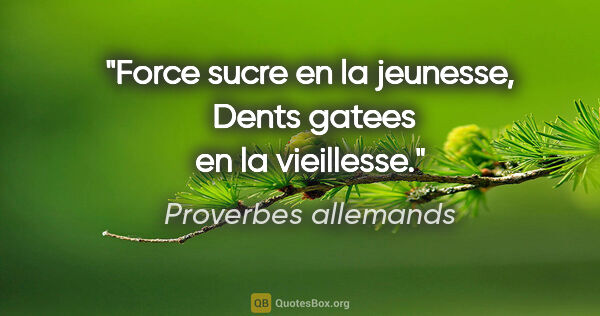 "Proverbes allemands citation: ""Force sucre en la jeunesse,  Dents gatees en la vieillesse."""