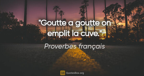 "Proverbes français citation: ""Goutte a goutte on emplit la cuve."""