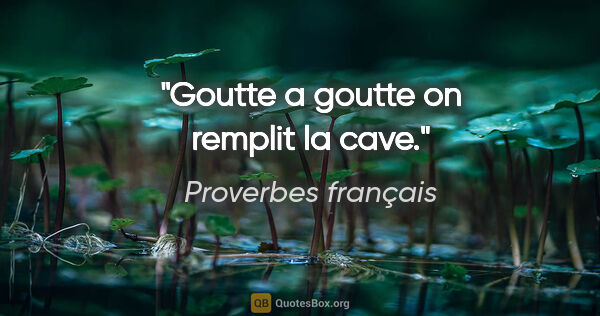 "Proverbes français citation: ""Goutte a goutte on remplit la cave."""